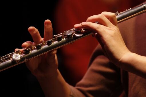 楽器の演奏に利用